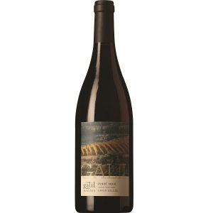 Galil Pinot Noir 2013 - Galil Mountain Winery