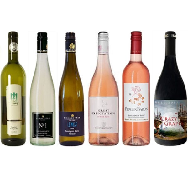 fruehlingsweinpaket-weissburgunder-jung-knobloch-blanc-de-noir-brogsitter-sauvignon-blanc-shiraz-rose-goedverwacht-berger-rose-rothschild-crazy-grapes-finca-bacara
