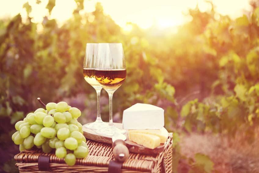 Slide Weinverkostung