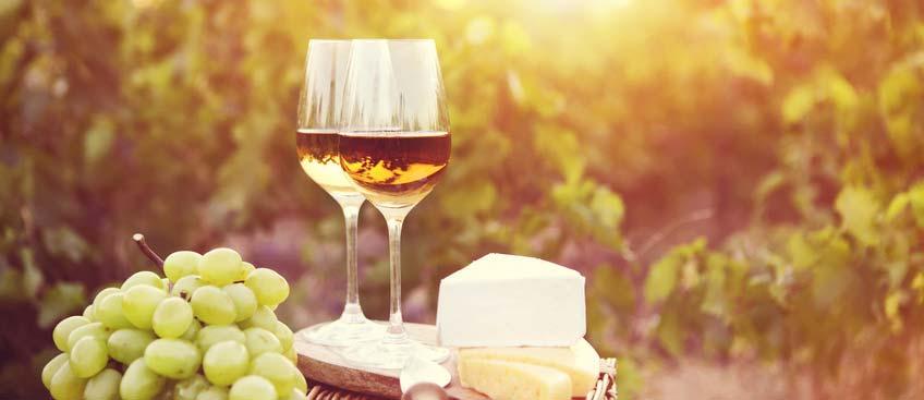 baltic weinkontor Weinverkostung - Teaserbild